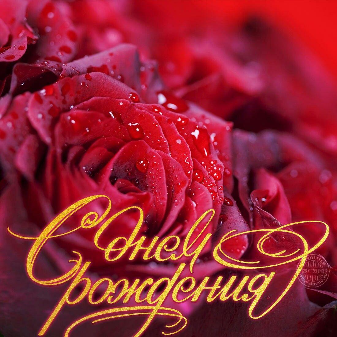 Красочные открытки к дню рождения, украины картинка надписью
