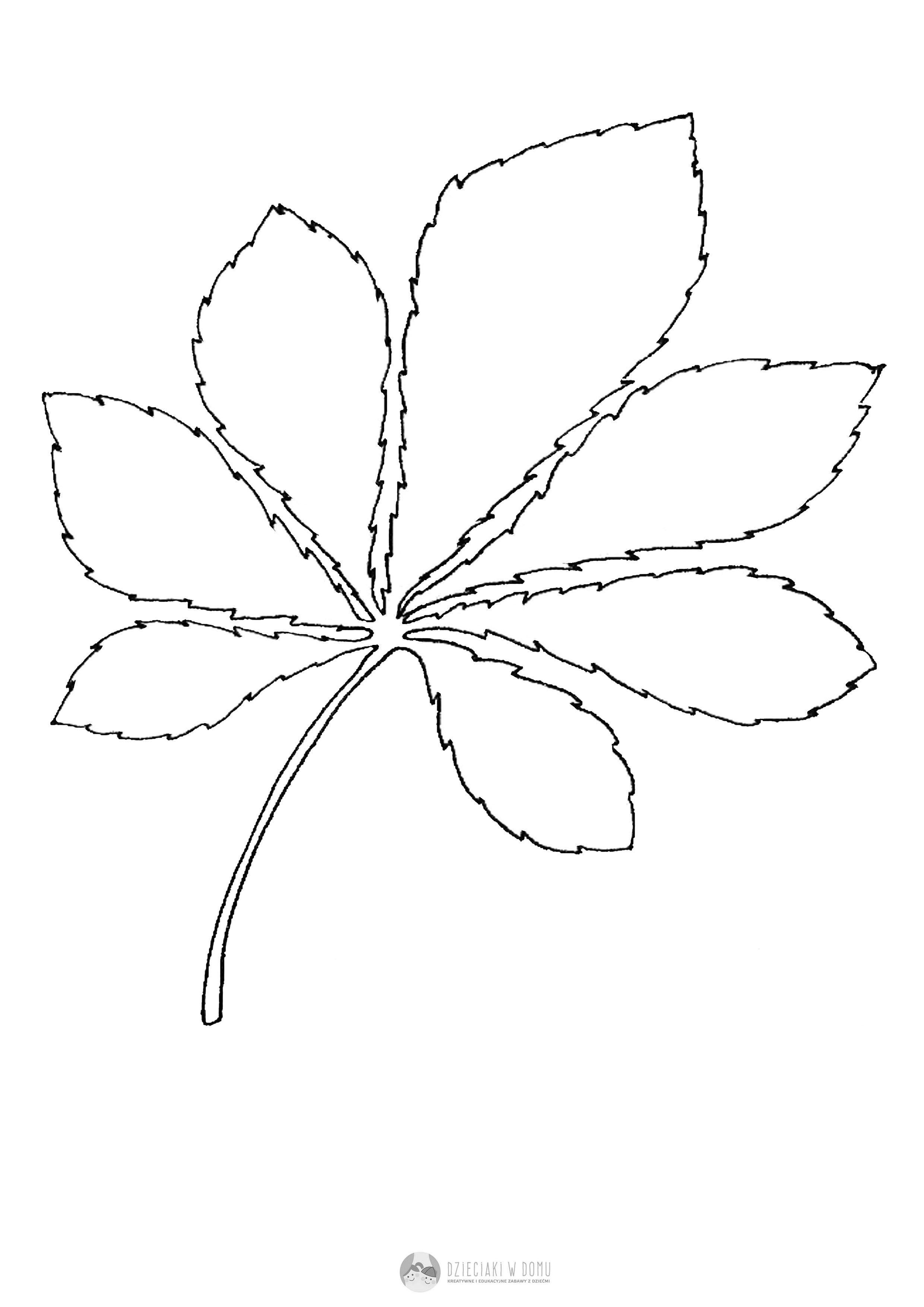 Liscie Drzew Szablony I Karty Pracy Dzieciaki W Domu Quilt Patterns Stencils Diy And Crafts