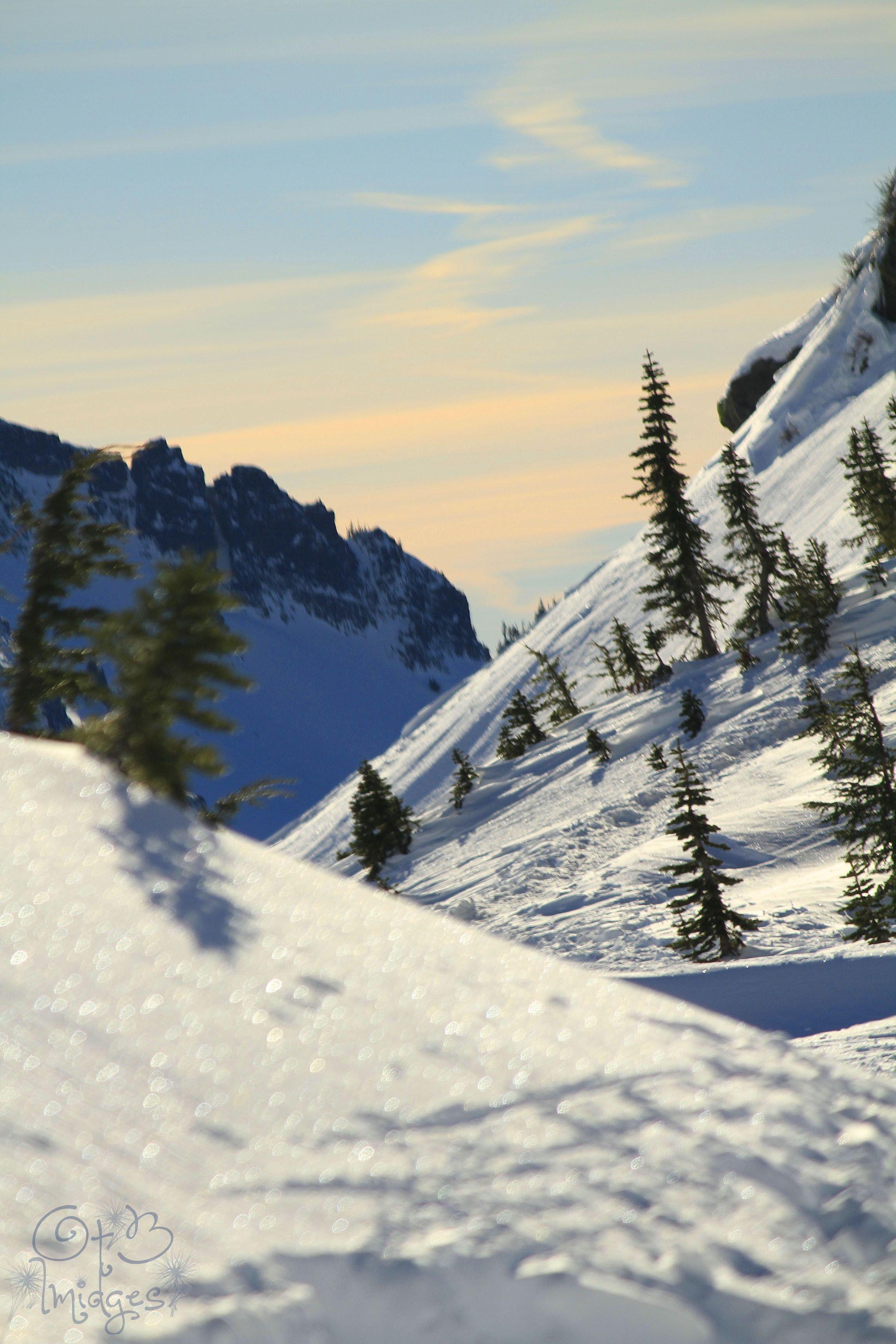 Snow shoeing up at Mt. Rainier,