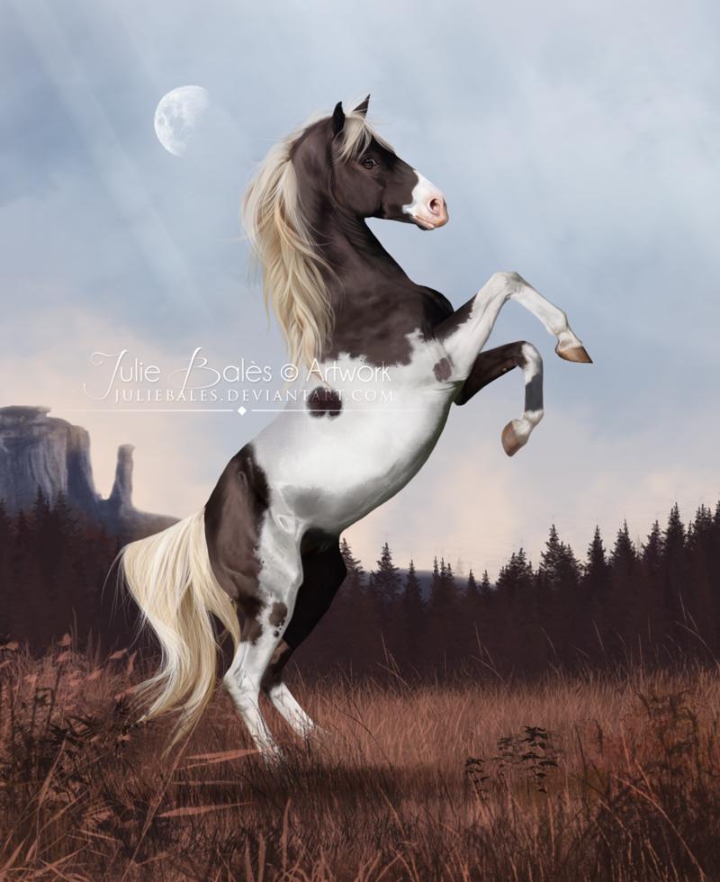 Petit Tonnerre By Juliebales On Deviantart Horse Art Equine Art Horses