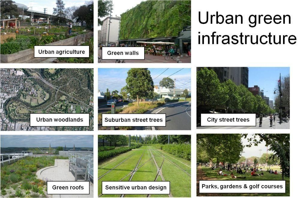 Examples of urban green infrastructure source http for University of melbourne landscape architecture