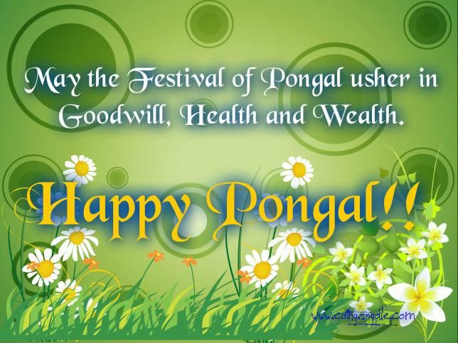Pongal greetings wishes and pongal messages pongal greetings pongal greetings wishes and pongal messages m4hsunfo