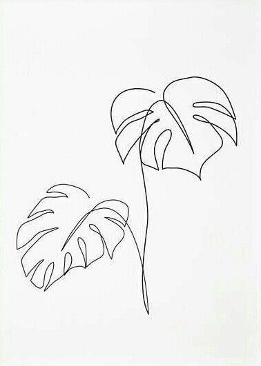 inktober2018 inktober - tag 18 - eine pflanze Leandro Guttemberg - Adam's Rib ... - Coffee