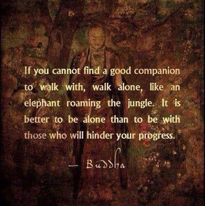 #Buddha #Buddhist #Buddhism #Companion #Walk #Elephant #Jungle #path #ROFLMAO oad #way #highway http://www.GrumbleDude.com #GrumbleDude #saying #quote