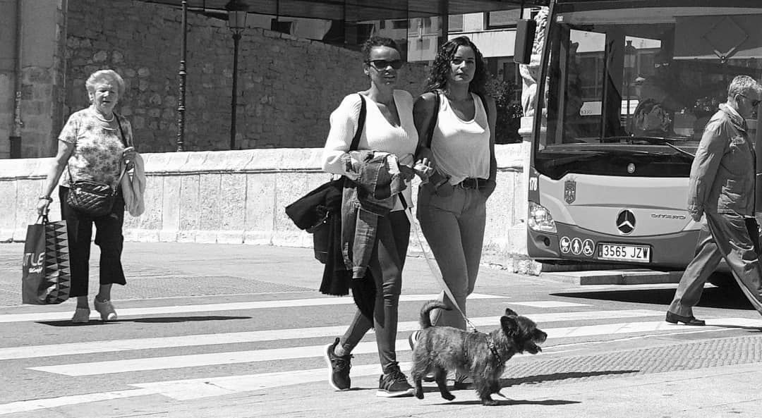 Generations & a dog ^ ^ #streetphotography #streetfoto #peoplewatching #summerfashion #summerstyle #streetstyle #streetscene #storyofthestreet #urbanlook #streetlook #urbanstyle #urbanfashion #womensfashion #happy #instagood #instadaily #ig_streetpeople #ig_fashion #beautiful #style #beautifulpeople #edgeofcurve #myfeatureshoot #fashionshoot #streetmob #family #dogs