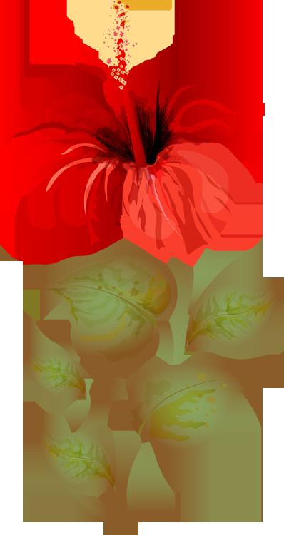 Pontiac's Rebellion An Overview Flower clipart, Clip