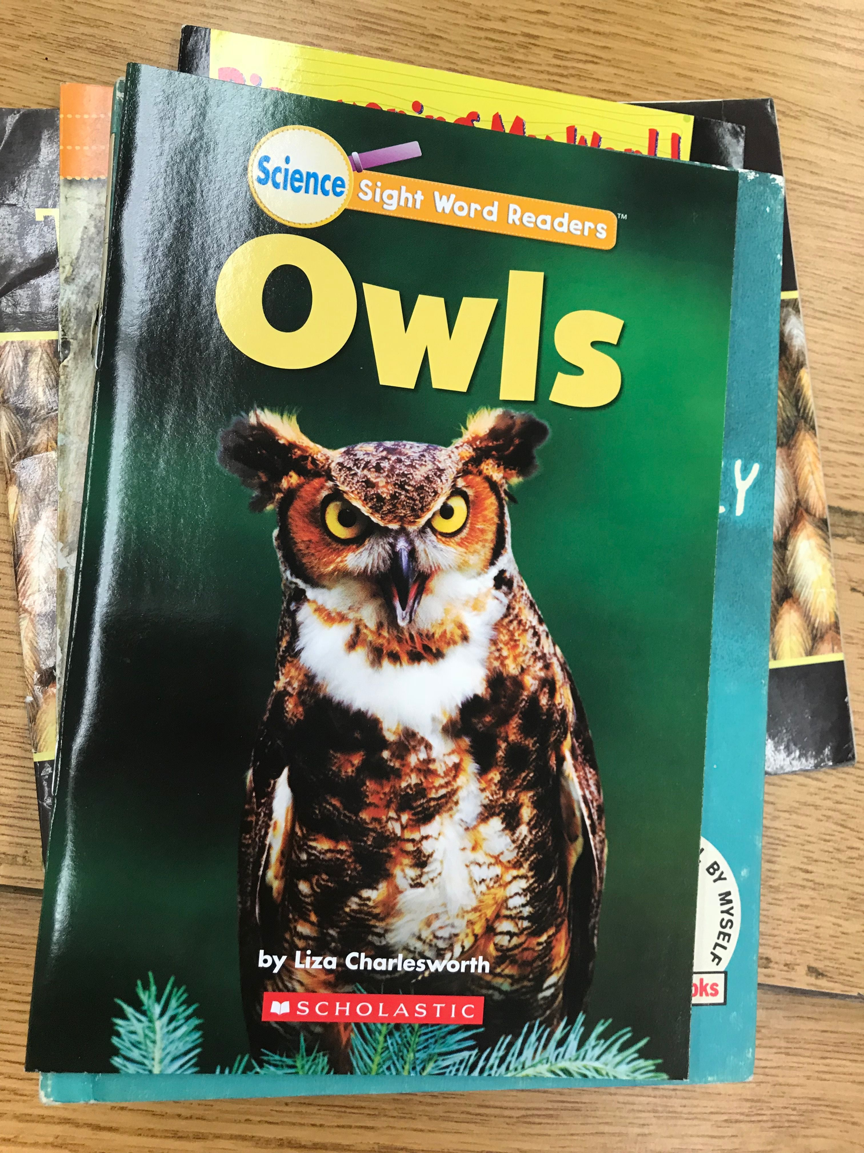Pin by janet delphine on Owl Books   Owl books, Owl theme ...