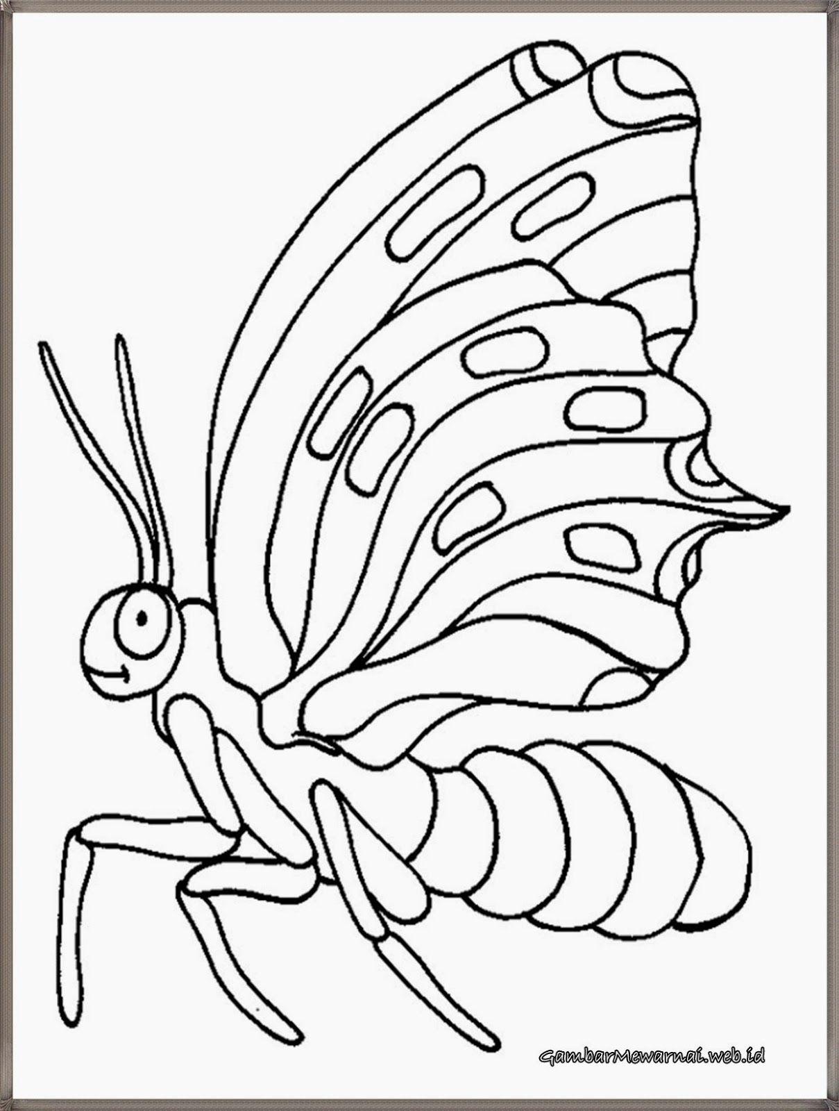 lembar mewarnai gambar kupu kupu