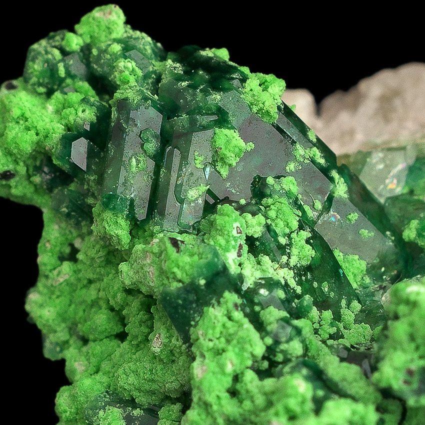 Chrome-Vesuvianite & Chromian Grossular - Jeffrey Mine, Asbestos, Québec, Canada