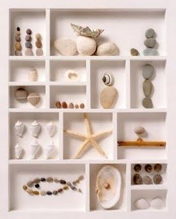 printers tray - mix shells In for a beach theme