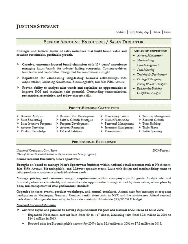 Resume Resource Sales Account Executive Resume Example 632af966 Resumesample Resumefor Executive Resume Resume Examples Job Resume Samples