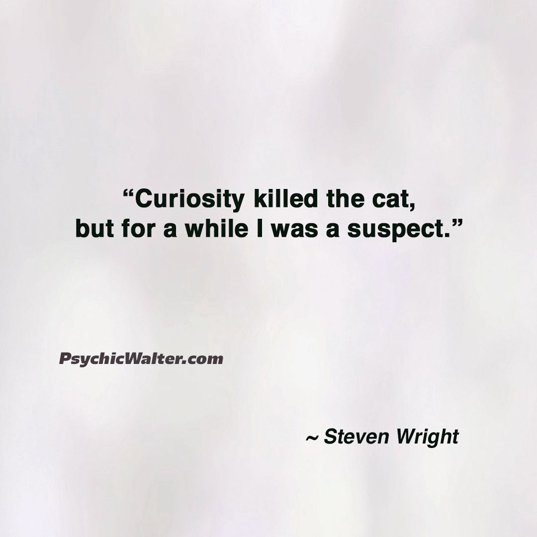 Curiosity Funny Quotes Inspirational Quotes Psychic Source