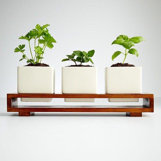 Interior Window Flower Boxes Design 27 Black Thumb