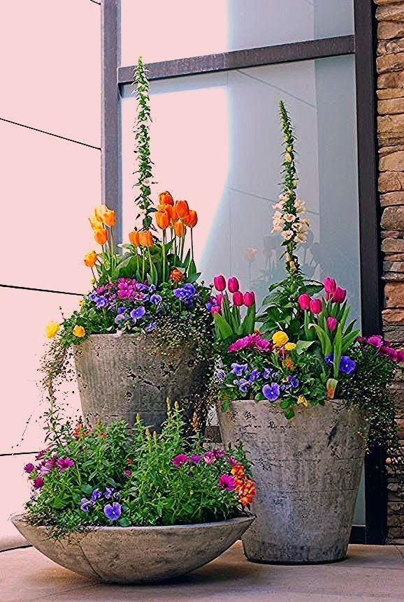 Photo of Frühlingsblumen im Haus oder im Garten bringen mehr Lebensfreude