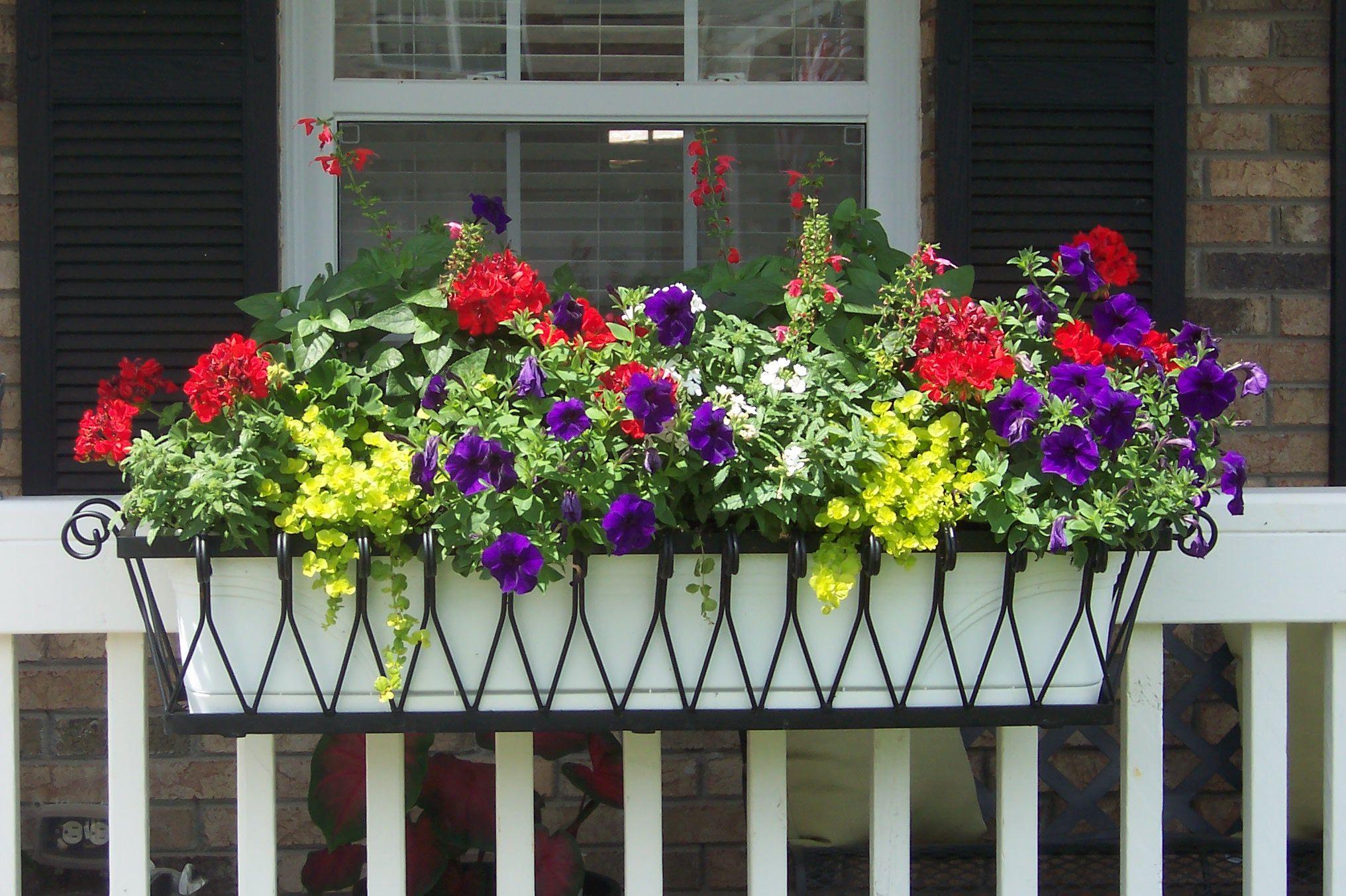 Deck Rail Flower Planter Boxes
