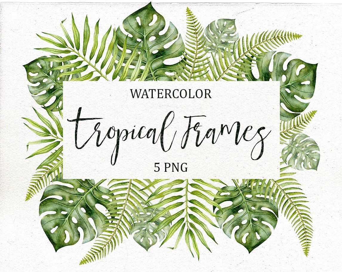 Watercolor Tropical Frames Tropical Frames Clip Art Tropical