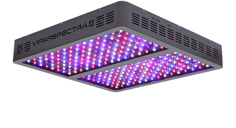 Pin By Lamppedia On Led Grow Lights For Indoor Plants Led Grow Lights Best Led Grow Lights Best Grow Lights