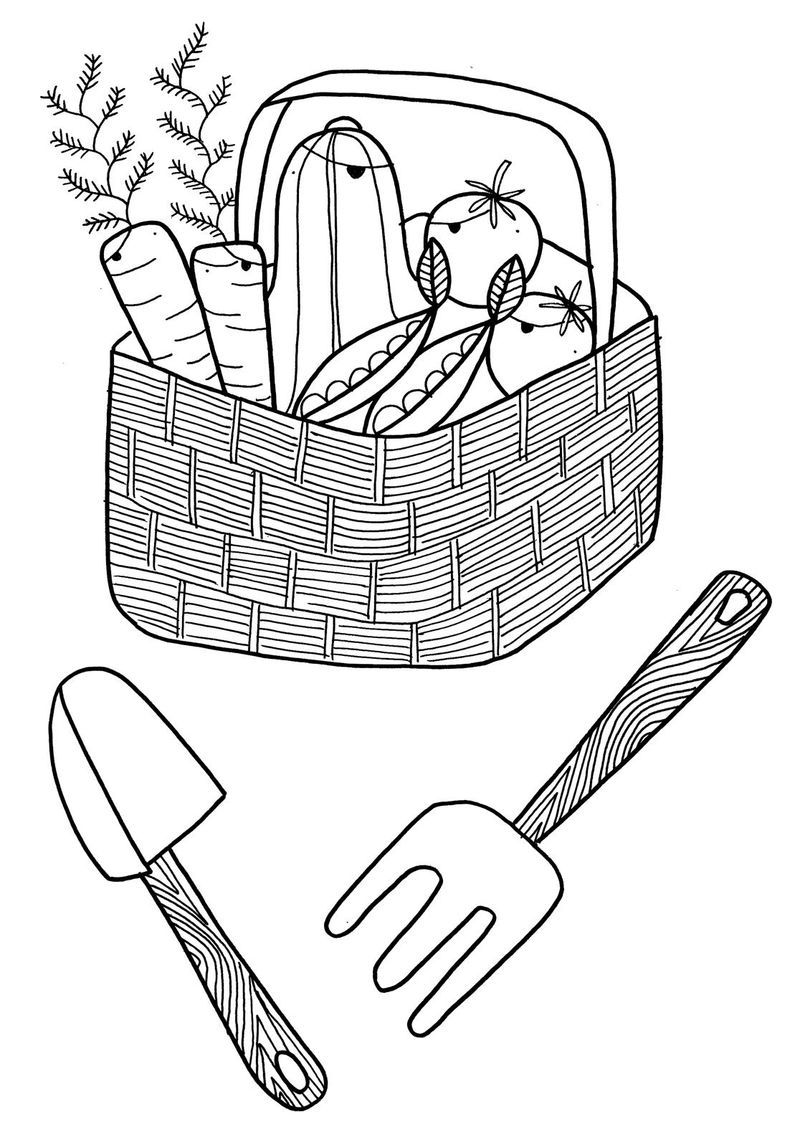 Vegetable Garden Harvest Coloring Page Garden Coloring Pages Fruit Coloring Pages Flower Coloring Pages