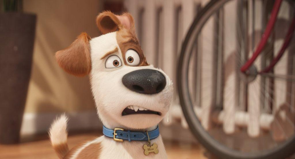 The Secret Life Of Pets 2016 Hdrip 480p 720p