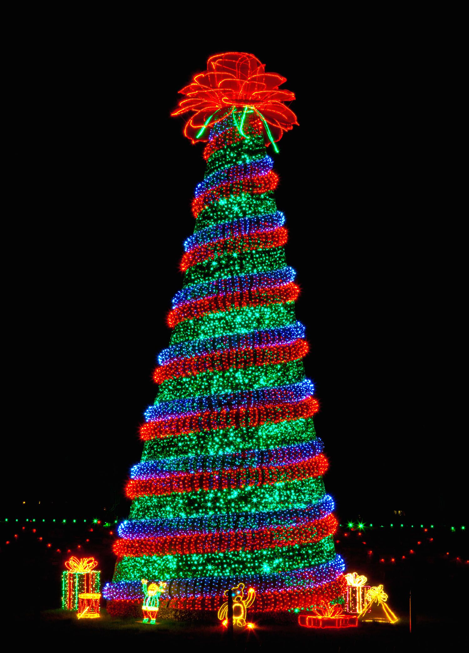 181ea18c2c1055a83a1f5fbcb2ba8491 - Garvan Gardens Hot Springs Christmas Lights