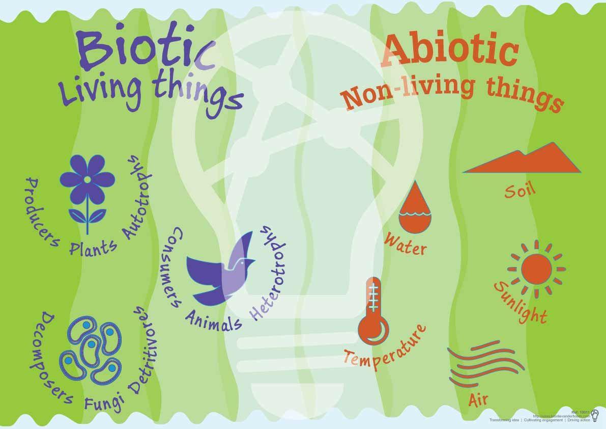 Abiotic and biotic