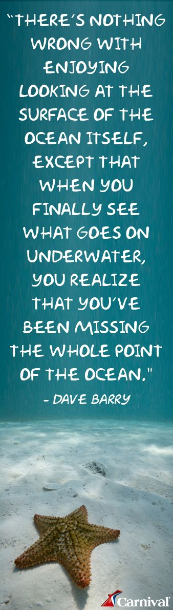 We Had No Idea How Much There Was To See Underwater And How