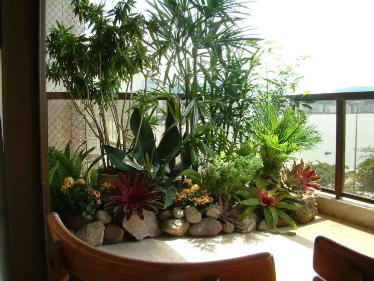 plante verte balcon hiver