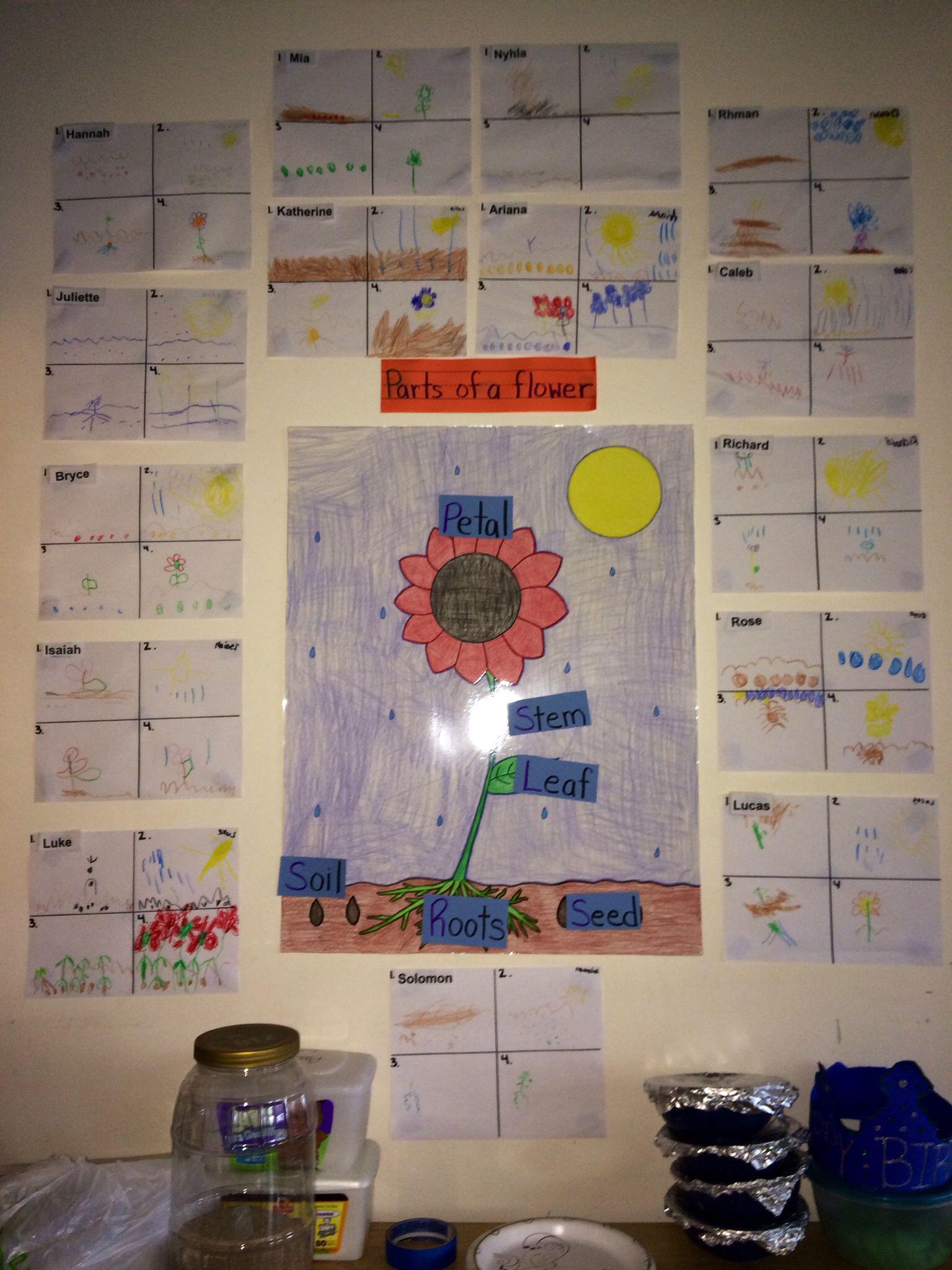 Pin by Tiffany Romo on My Classroom Activities 3 year