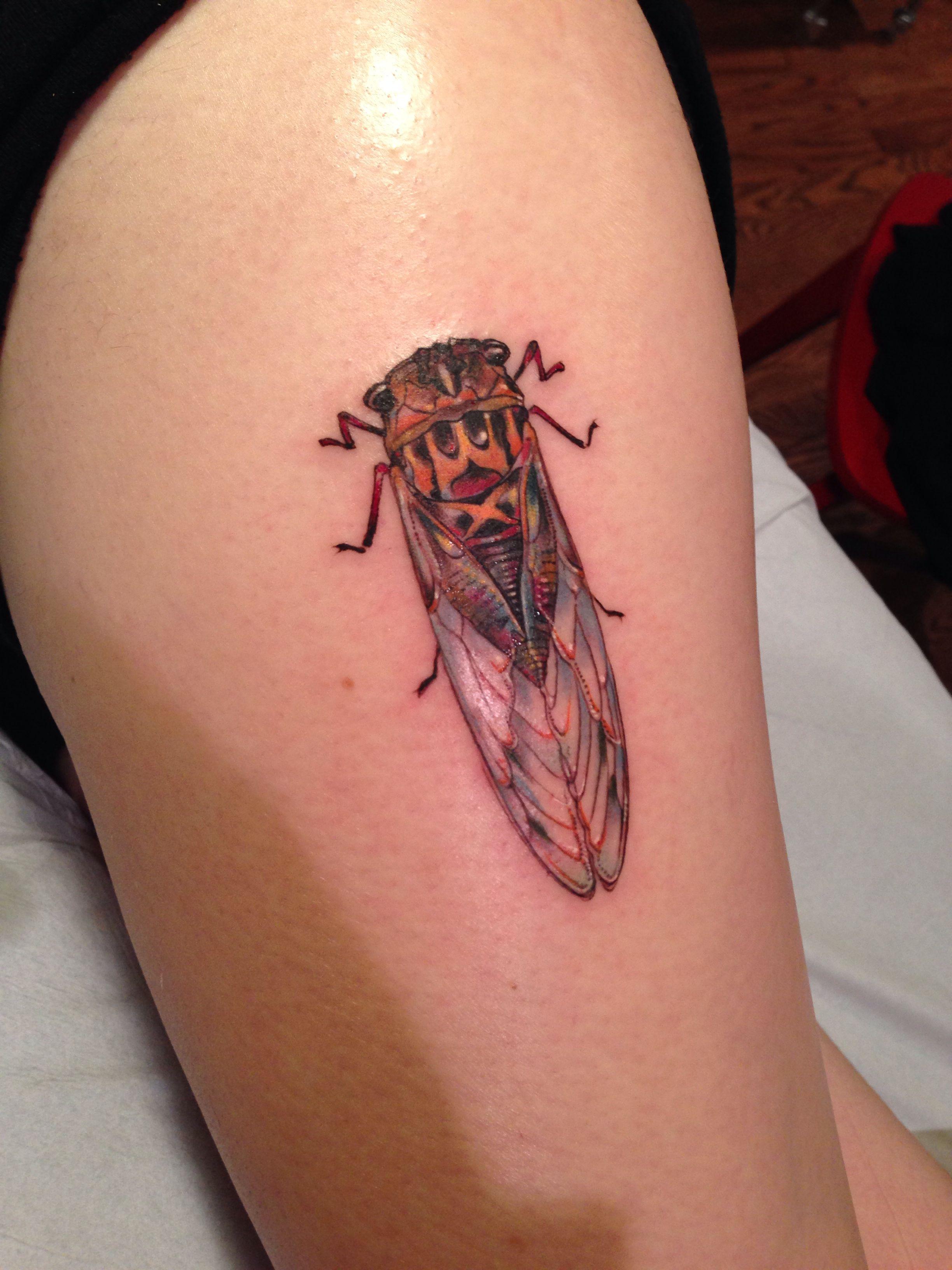 Stephanie Brown at butterfat studios #tattoo #legtattoo #cicada #cicadatattoo #butterfat #bugtattoo #bug #prismatic #smalltattoo #nature #naturetattoo