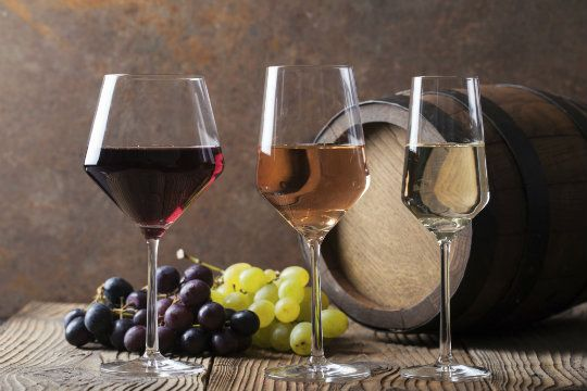 Small Group Tuscany Wine Tasting Tour from Florence : Things To Do, Tours & Activities | Tuscany Things to Do