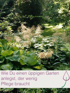 Pflegeleichten Garten mit üppigen Beeten anlegen   Garten ...