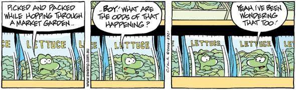 Swamp Cartoons: Mort Frog Lettuce Comic