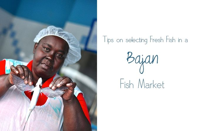 Tips on selecting fresh fish in a Bajan Fish Market #Barbados