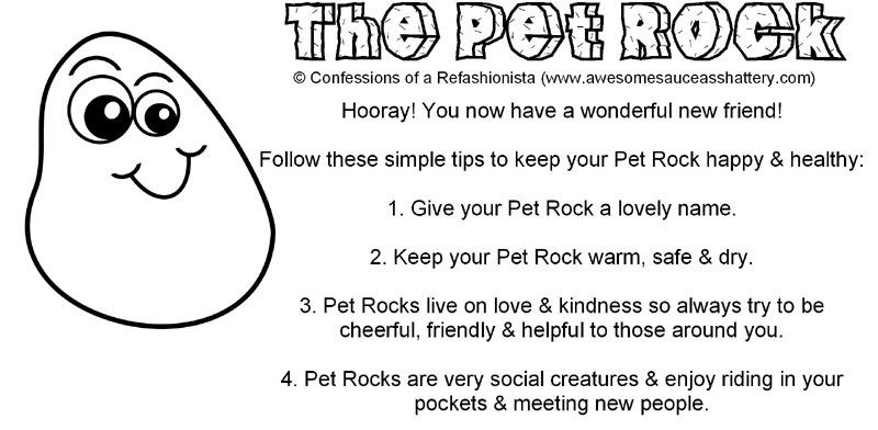 Diy Pet Rock Party Favors Confessions Of A Refashionista Pet Rocks Diy Stuffed Animals Rock Sayings