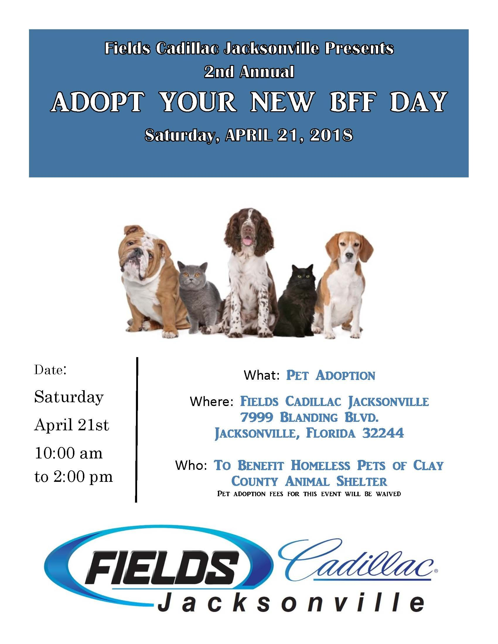 """Join us on April 21st for our 2nd Annual """"Adopt Your New"""