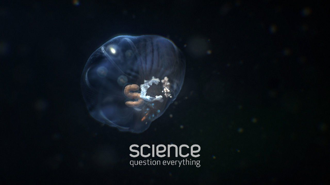 MvsM / SCI / Deep Sea. Discovery USA commissioned ManvsMachine to create a family of idents for it's recently re-launched Science network.  ...