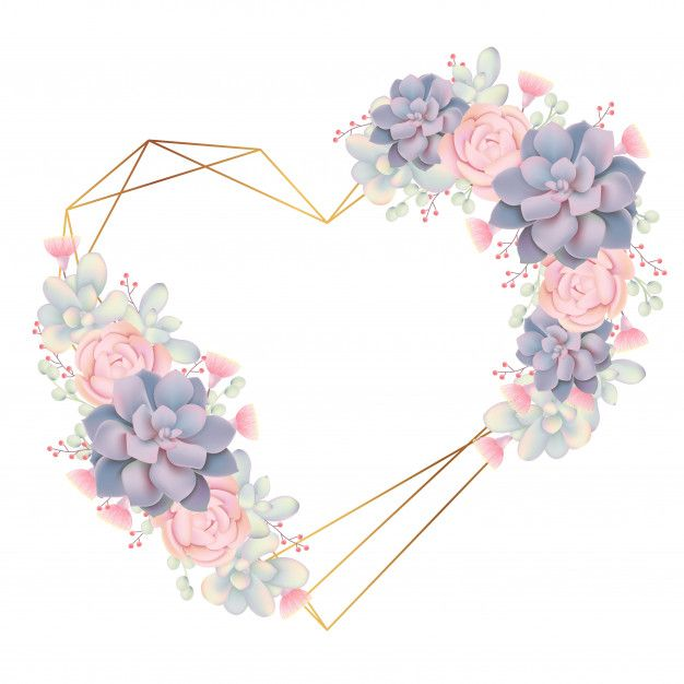 Frame Background Floral With Succulents