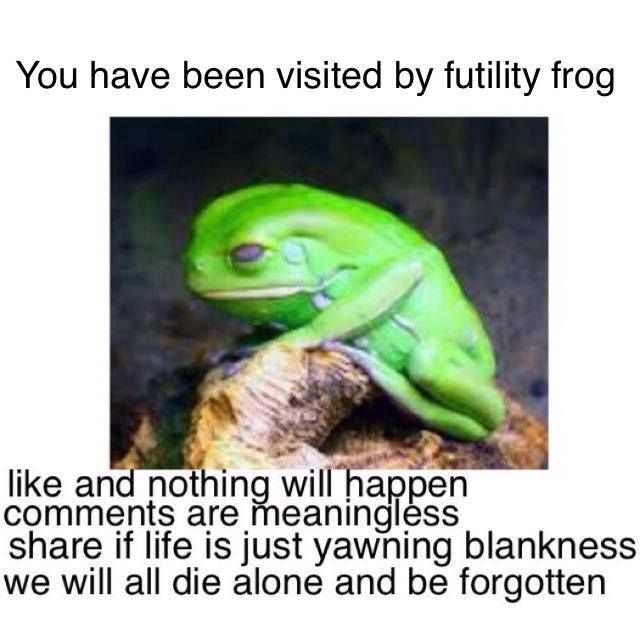 1823f499712cfdd319f7f3f955522094 nihilist memes on facebook when the dying calls pinterest