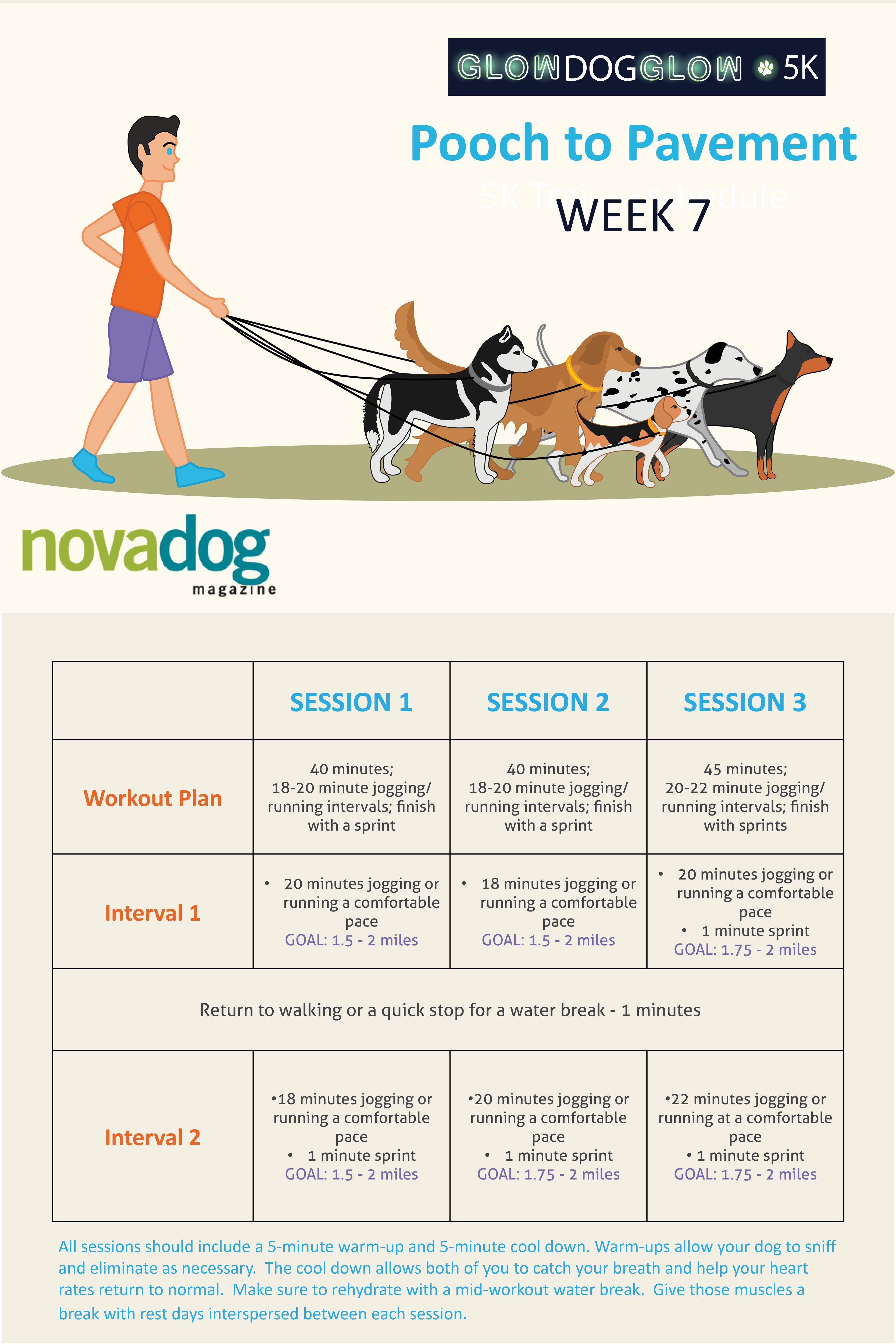 Pooch To Pavement 5k Training Schedule Week 7 Training Schedule