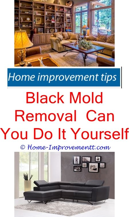 Black mold removal can you do it yourself home improvement tips black mold removal can you do it yourself home improvement tips 3173 diy cabinet doors and contemporary kitchen cabinets solutioingenieria Images