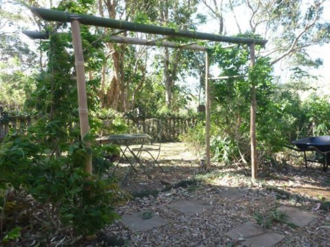 bamboo arbour - Google Search