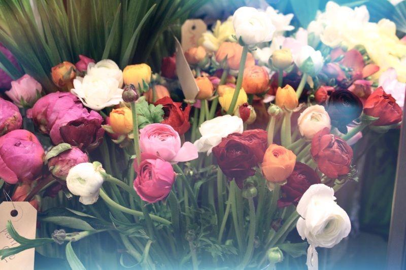 Upea tunnelmallinen kukkakauppa Anemone ja leikkokukkasuosikkini