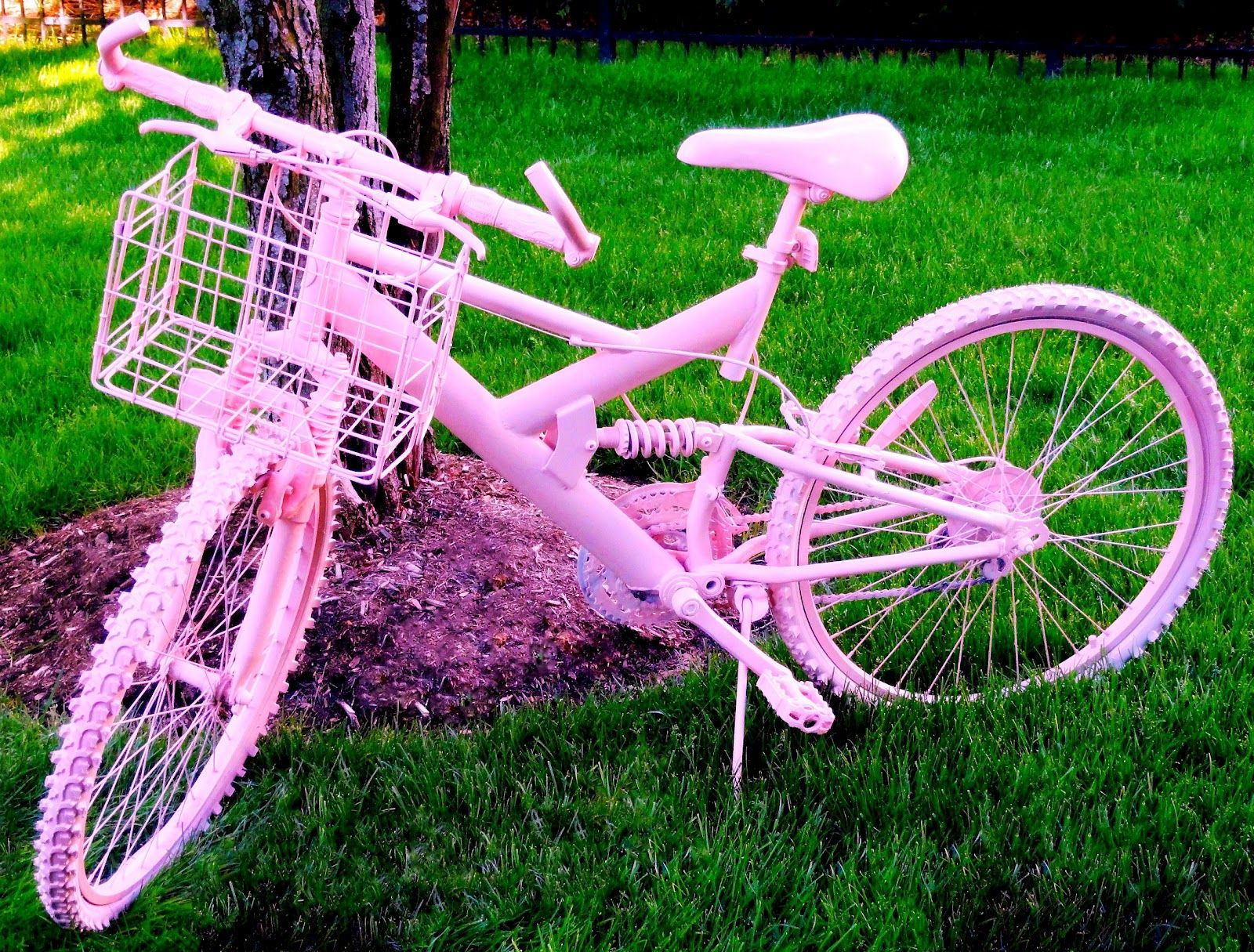 ~ haverford house ~ pink bike