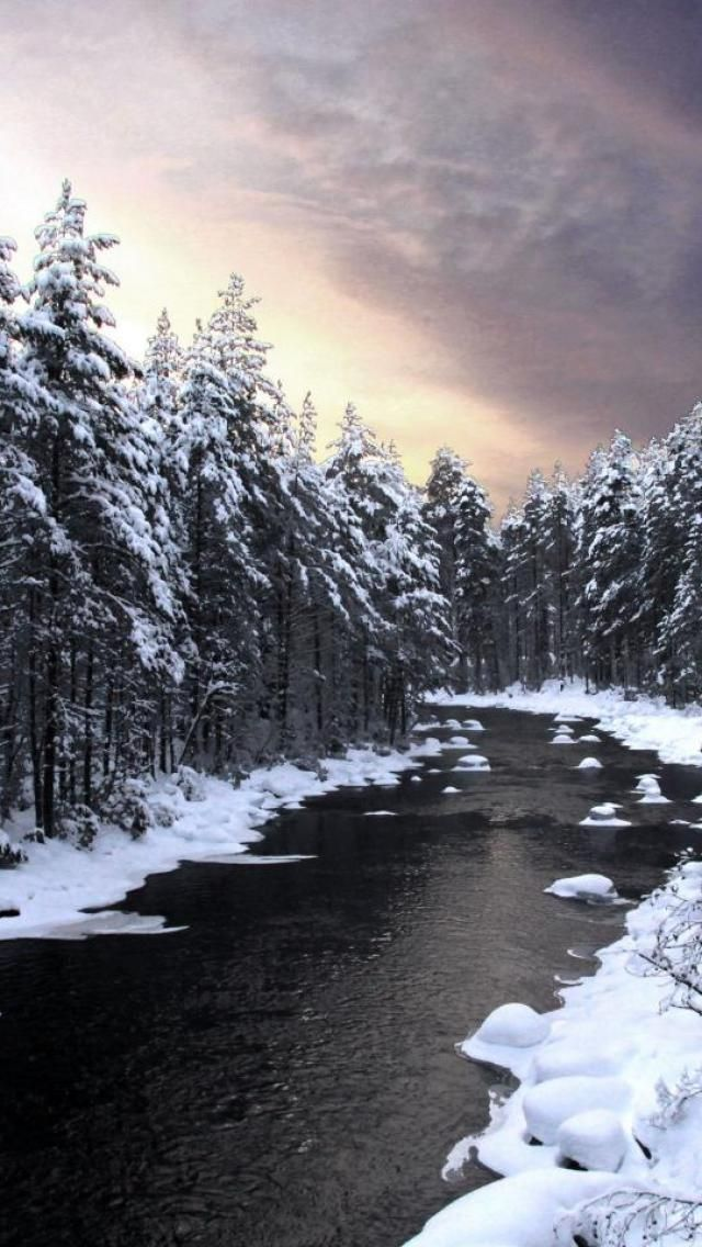 Forest, Nature, River, Lake, Snow, Finland