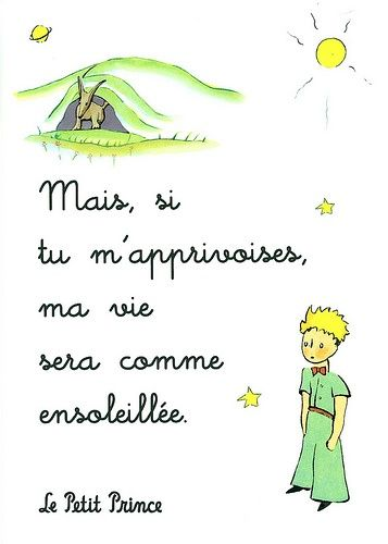 Pr0038 Cs Le Petit Prince Prince Quotes French Quotes Best Quotes