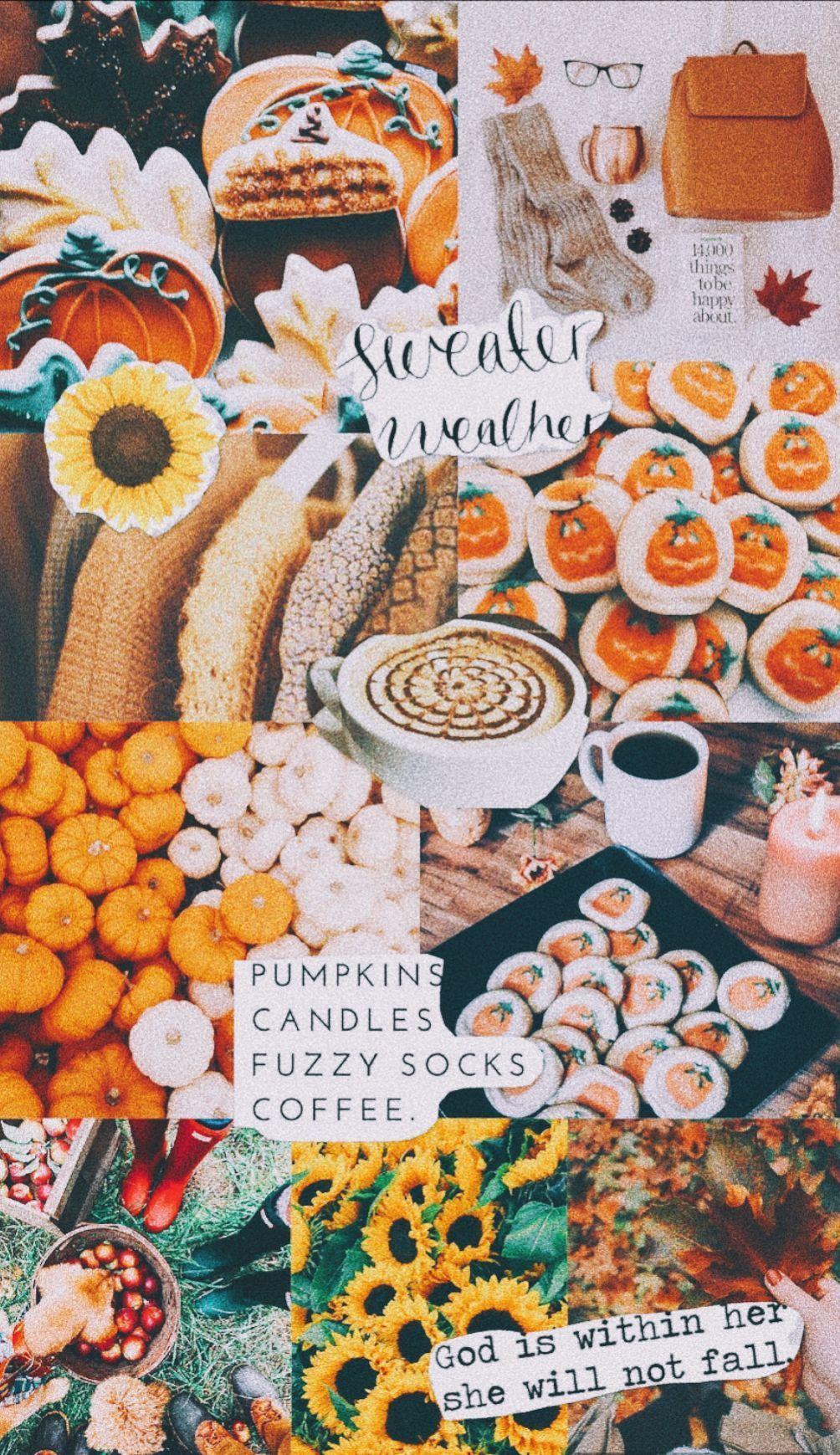 Fall Aesthetic Wallpaper Simple