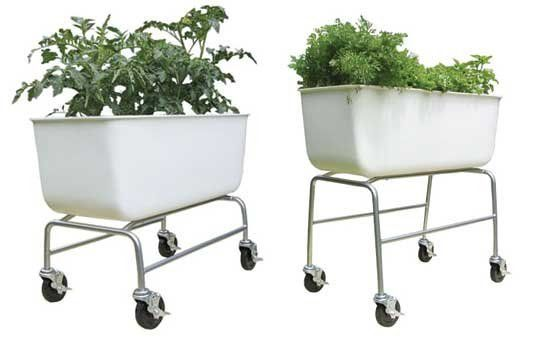Vegetable Gardens On Wheels Food Map Containers