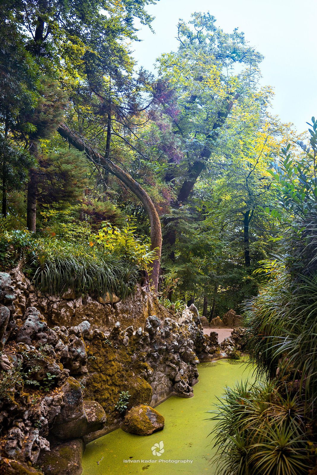 The Gardens of Quinta da Regaleira, Sintra - The lush vegetation found in the gardens of Quinta da Regaleira seems to embrace the architecture, suggesting the harmonious existence of the natural and the man-made. There's an intriguing symbiosis here. As you emerge from dark tunnels, cross stepping-stone ponds, or feel the spray from water cascading over rockeries – you feel a sense of unity.