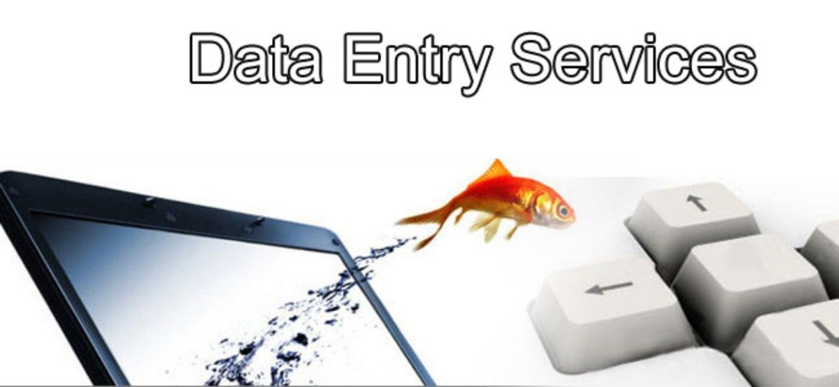 Job Offers for Data Entry Officers in Dubai Jobs Pinterest - data entry job description
