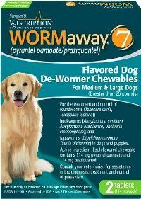 Remedies For Worms In Cats Pet Care Pets Safe Ingredients